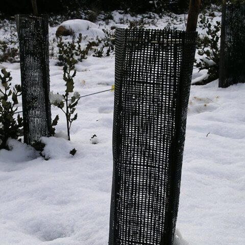 PROTECTIVE NET Standard